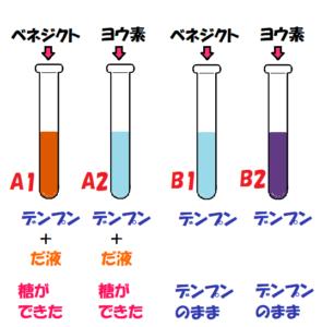 デンプン入りの試験管4つだ液と指示薬入り色の変化の結果
