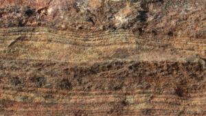 化石がある地層