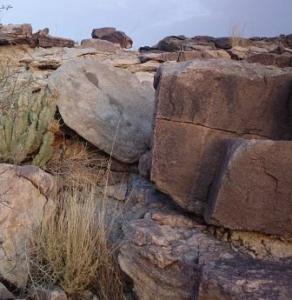 風化した岩石