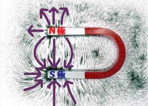 U型磁石のまわりの磁力線の様子