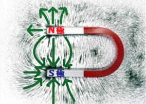 U型磁石のまわりの磁力線
