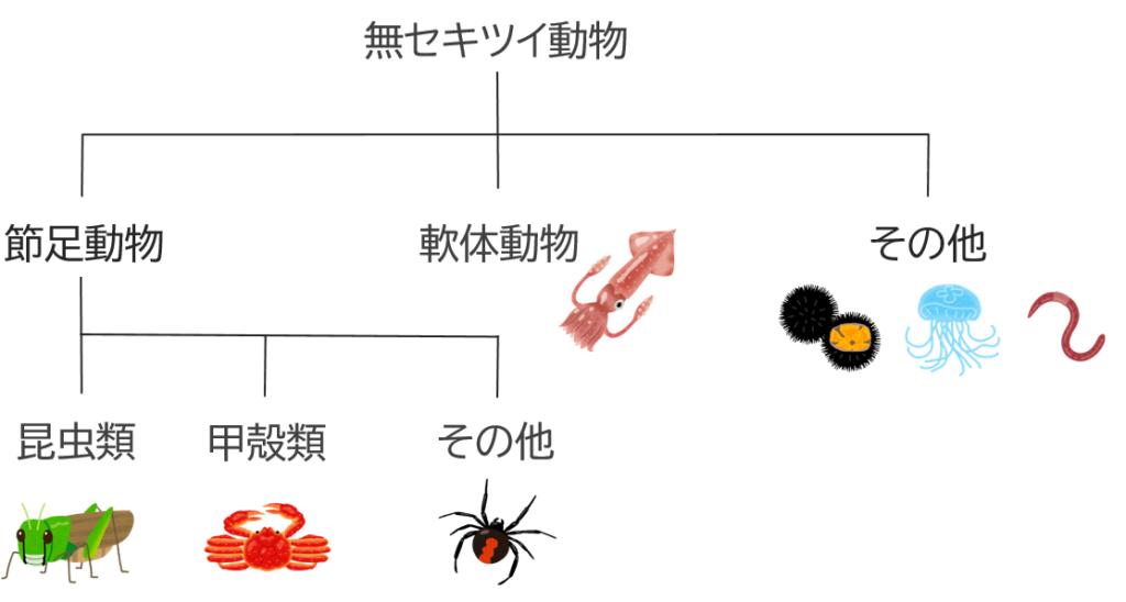 無脊椎動物の分類